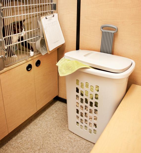 1222-Cat-Shelter