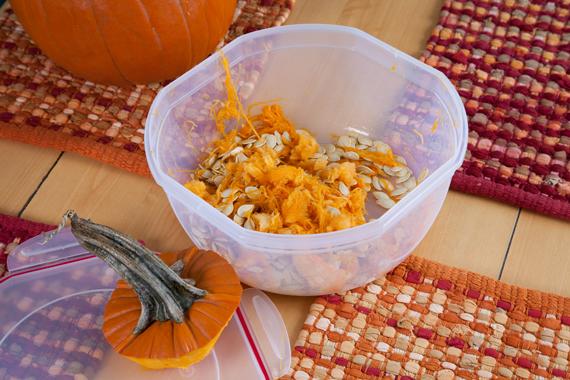 0395-PumpkinGuts